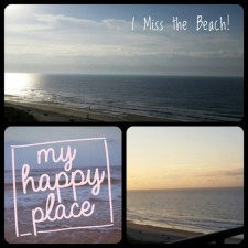Wordless Wednesday;  Miss the Beach