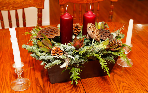ProFlowers And ProPlants Delivers Live Holiday Decor To