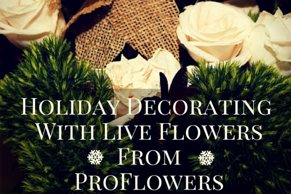 ProFlowers and ProPlants Delivers Live Holiday Decor to Your Doorstep #Giveaway